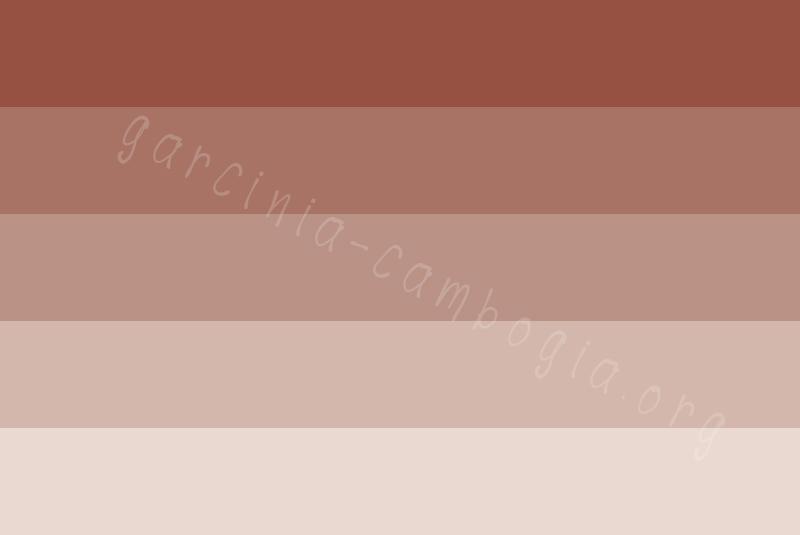 4 โทนสีสวยๆ ปี 2020 ที่ใช้สำหรับการทำกล่องจั่วปัง 03
